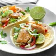 fish taco 12x