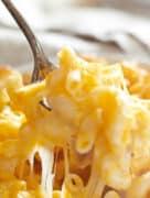 mac and cheese closeup
